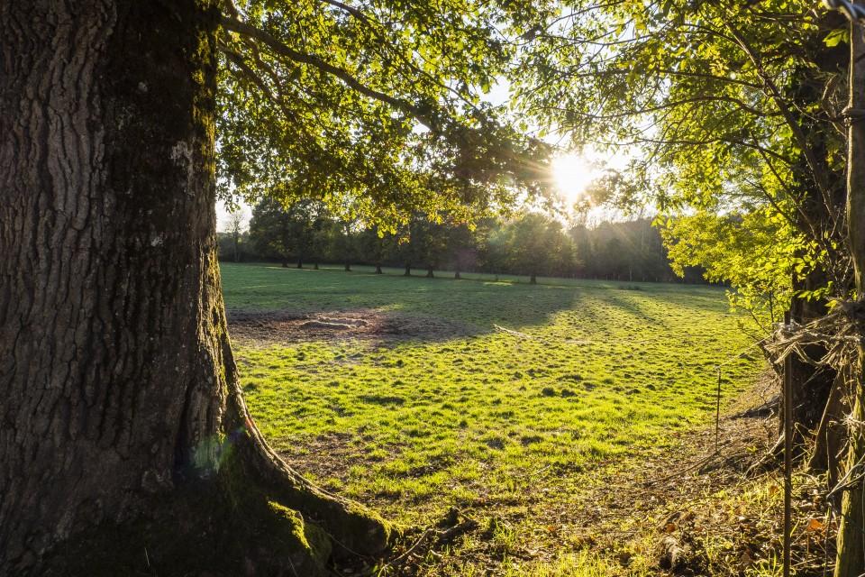 berry_automne_rando_outdoor__25