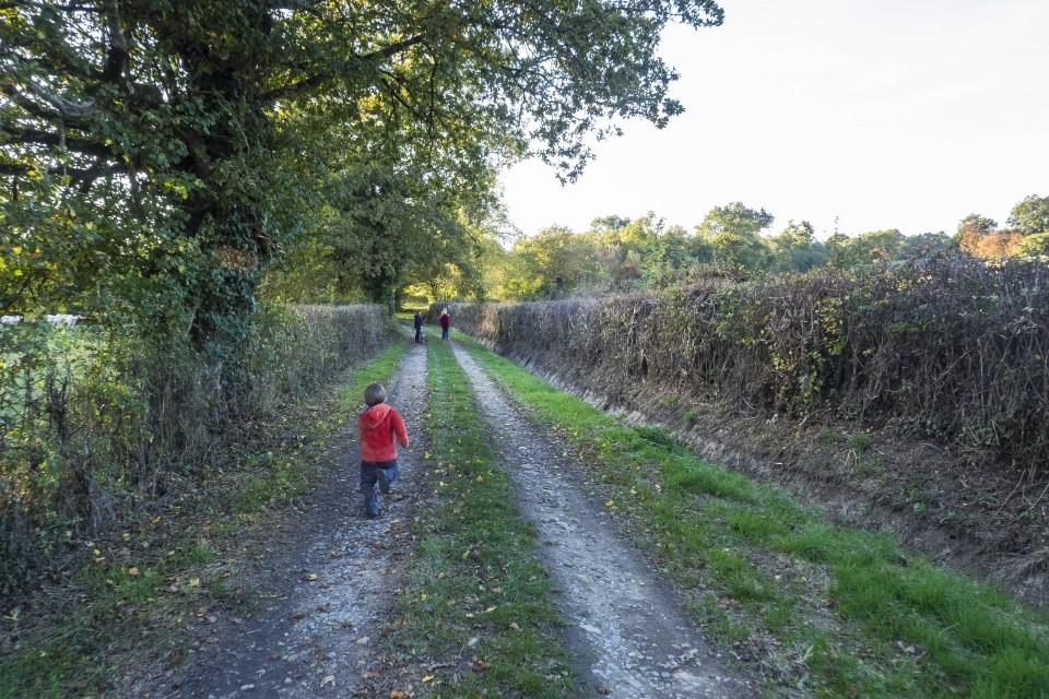berry_automne_rando_outdoor__3