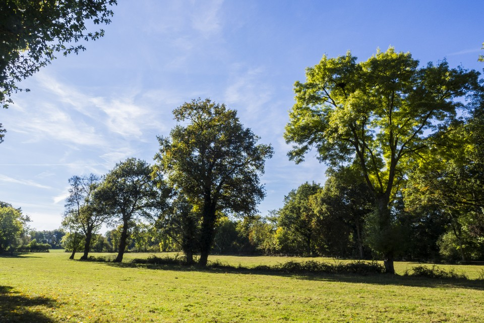 berry_automne_rando_outdoor__35