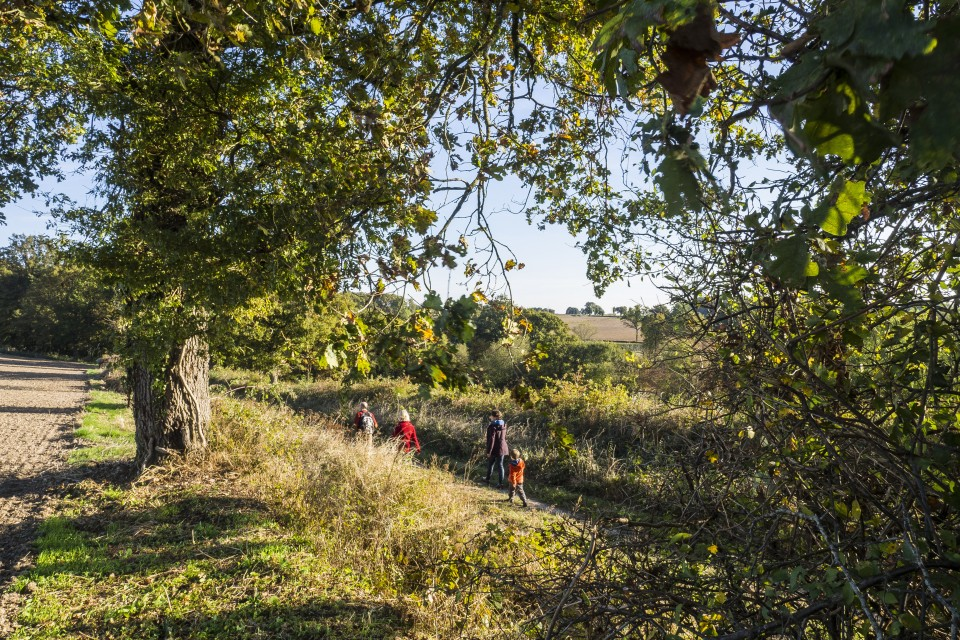 berry_automne_rando_outdoor__57