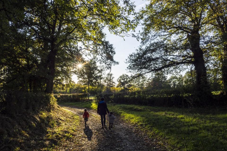 berry_automne_rando_outdoor__6