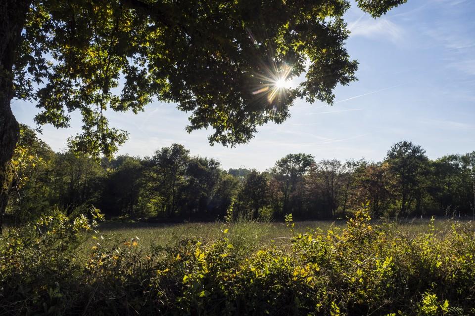 berry_automne_rando_outdoor__60