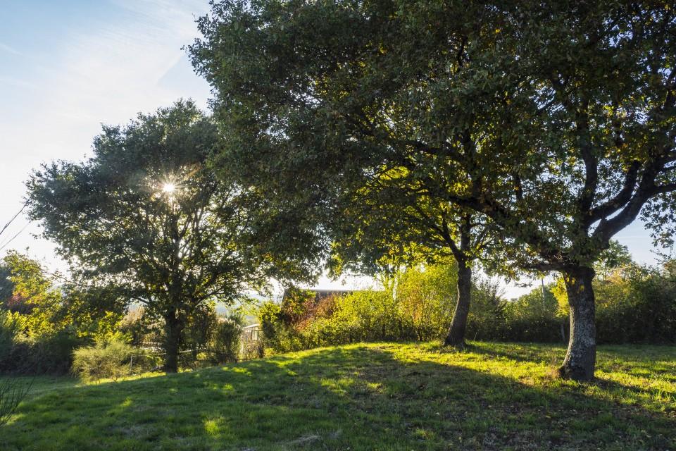 berry_automne_rando_outdoor__85