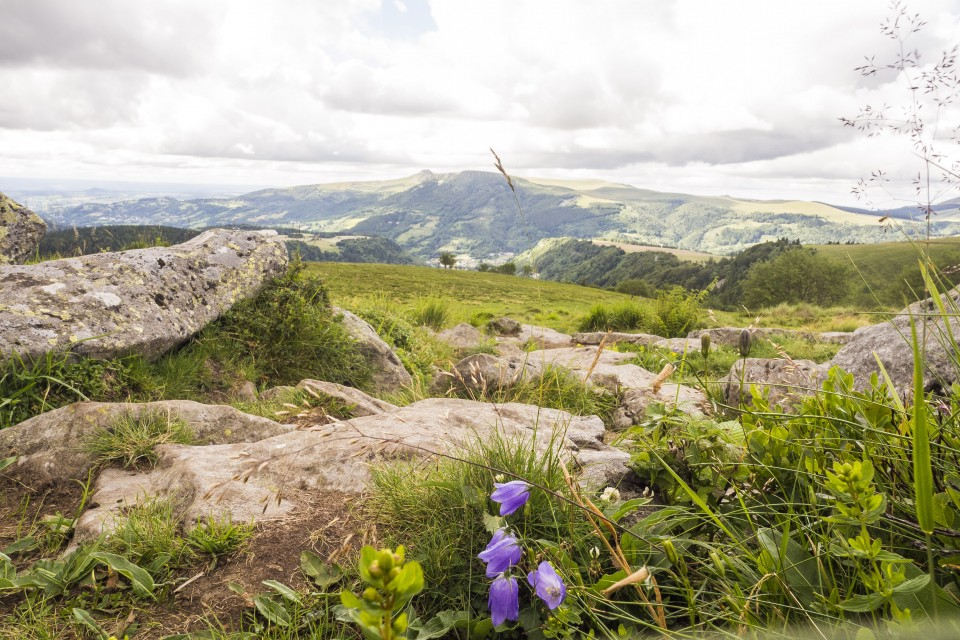 Auvergne_Puydesancy_montagne_paysages_223