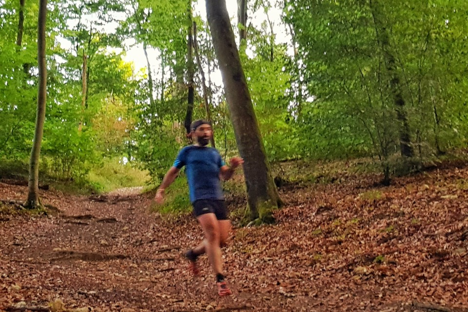 Trail running Fontainebleau