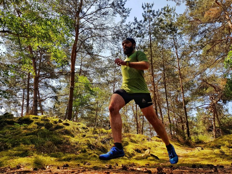 courir en forêt de fontainebleau